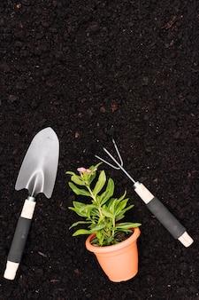 Ferramentas de jardinagem plana leigos com vaso de flores