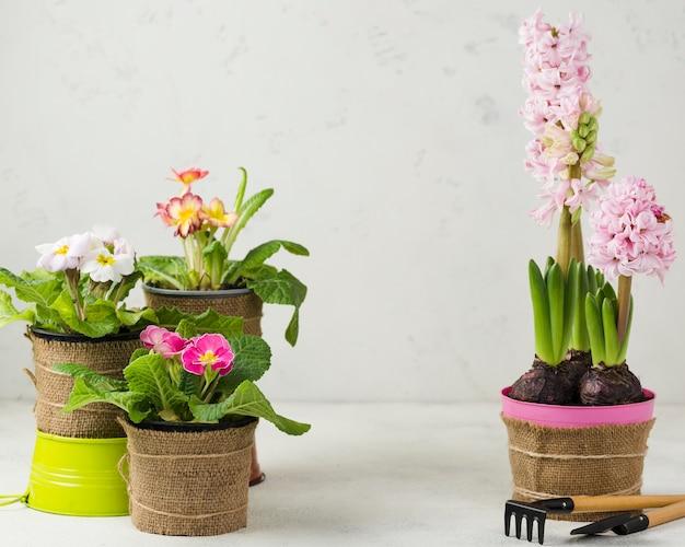 Ferramentas e vasos de flores