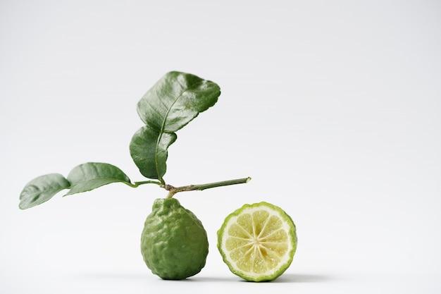 Ferramentas para plantio de bergamota e árvores, pás e forquilhas