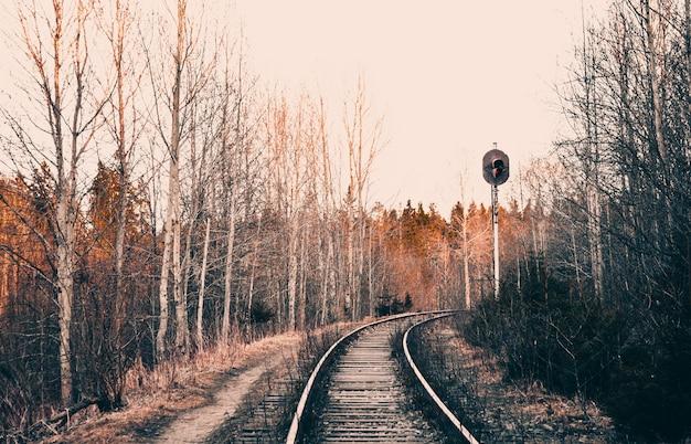 Ferrovia com semáforo na esquina, fotografia de arte