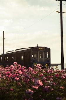 Ferrovia de trem