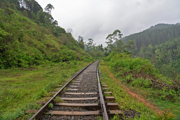 Ferrovia na região montanhosa do sri lanka