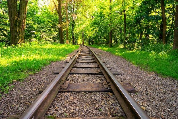 Ferrovia no parque de verão