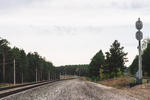Ferroviária viajando pela floresta. viagem em ferrovia. pólos com fios ao longo dos trilhos na luz solar. paisagem atmosférica da noite com semáforo da estrada de ferro.