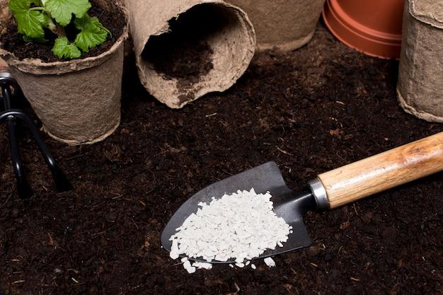 Fertilizantes minerais na espátula no solo do jardim e copos para mudas.