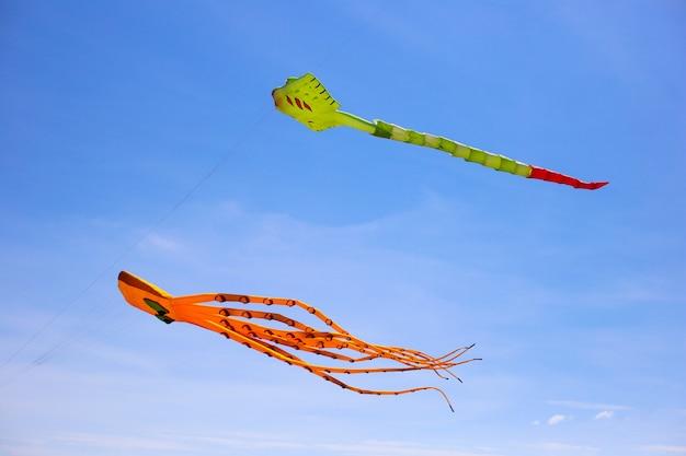 Festival de pipas. polvo alaranjado do papagaio no céu azul. cobra de pipa amarela