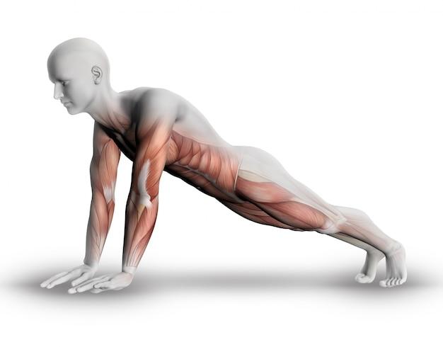 Figura 3d fazendo flexões