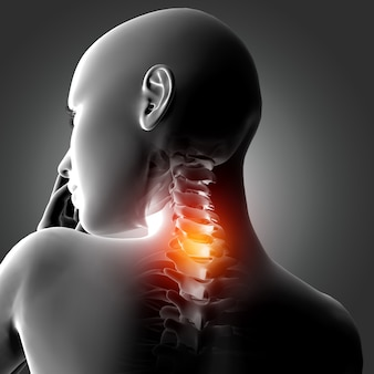 Figura médica feminina 3d com ossos do pescoço em destaque