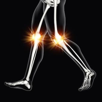 Figura médica masculina 3d com ossos do joelho em destaque