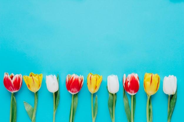 Fila composta de tulipas brilhantes