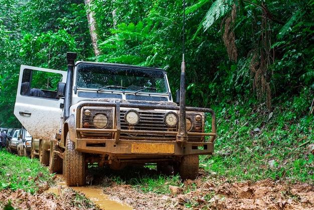 Fila de carros na floresta tropical pesada na áfrica
