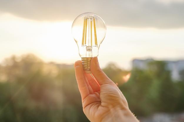 Filamento levou lâmpadas, mão segurando a lâmpada