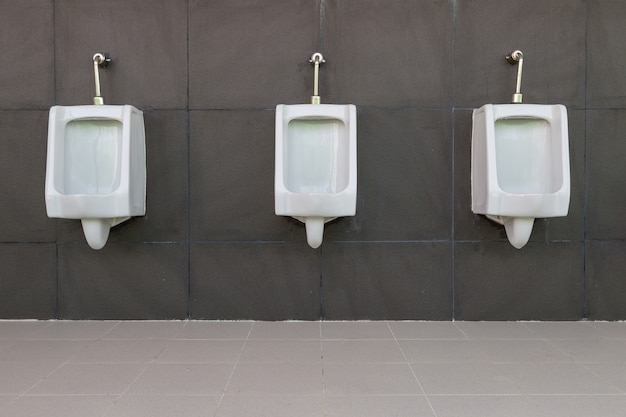 Fileira do banheiro público dos homens brancos do mictório com fundo cinzento da parede