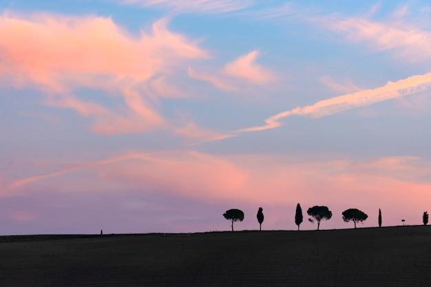 Fileiras de ciprestes com espaço de cópia e céu do sol, toscana, itália, europa.