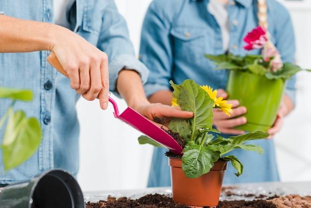 Filha do close-up que ajuda a mãe a plantar flores