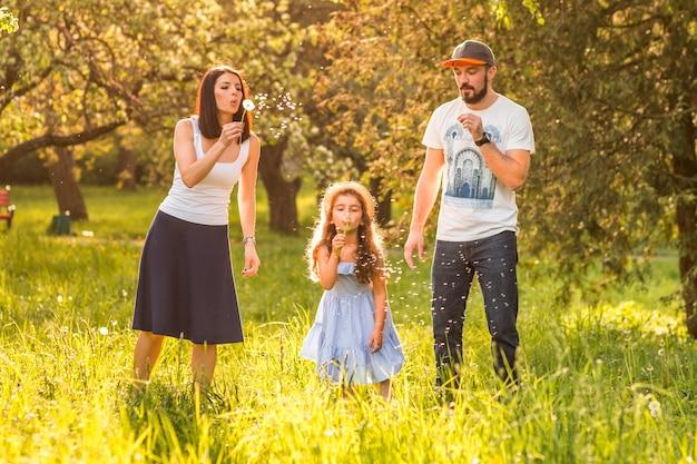 Filha, soprando, dandelion, com, dela, pais