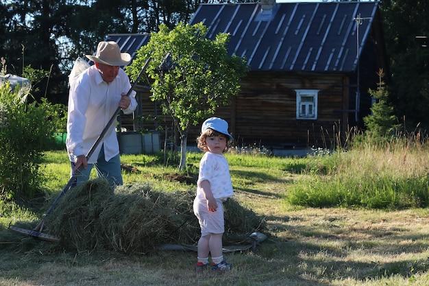 Filho e avô colheram feno