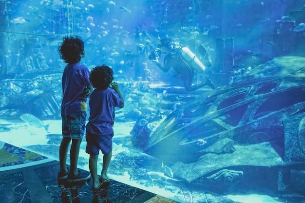 Filhos de silhuetas no grande aquário.