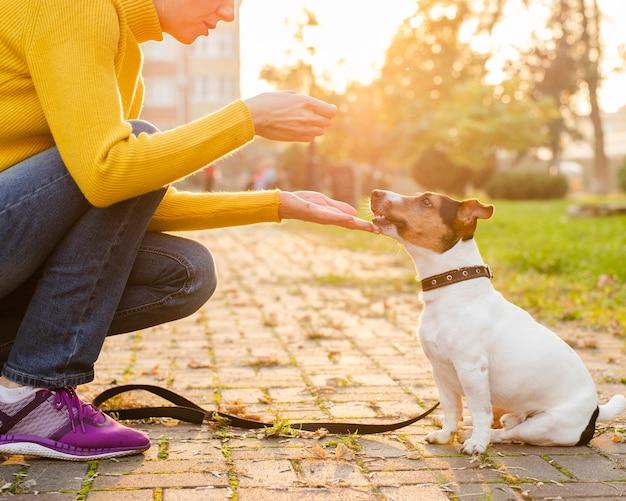 Filhote de cachorro adorável close-up com seu dono