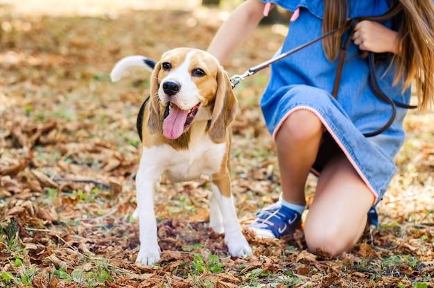Filhote de cachorro alegre andando com menina