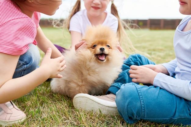 Filhote de cachorro bonito com crianças
