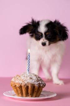 Filhote de cachorro com bolo de aniversário. uma vela