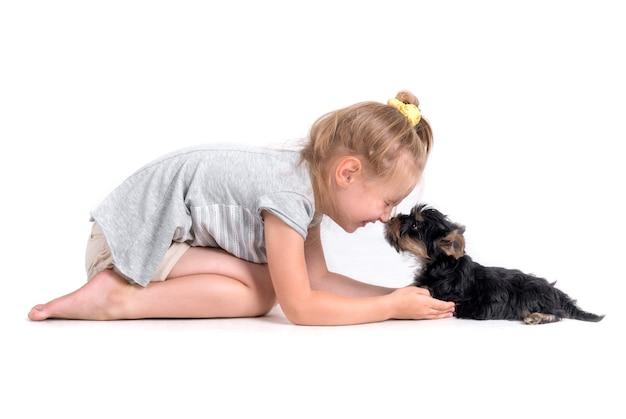 Filhote de cachorro york e menina
