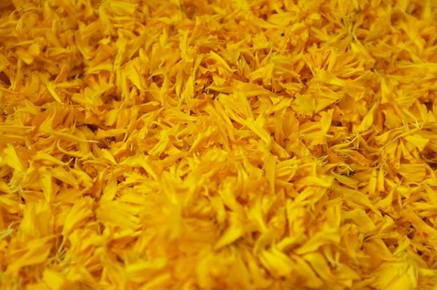 Fim, cima, amarela, marigolds
