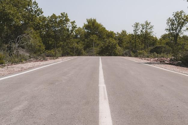 Fim de uma estrada de asfalto cercada por verdes e árvores