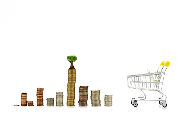Finanças e economia de dinheiro para o conceito de compras