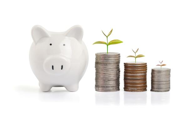 Finanças empresariais e conceito de economia de dinheiro
