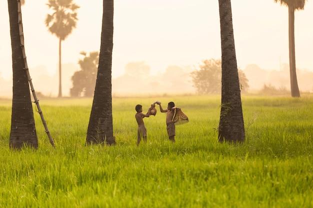 Fisher de crianças ásia olhando as artes de pesca no campo de arroz agricultura