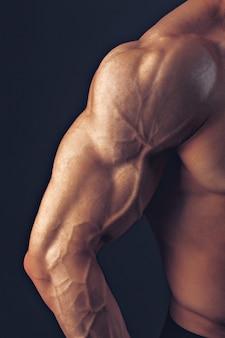 Fitness homem ombro bíceps músculos peitorais tríceps fisiculturista demonstra a forma física para aulas no ginásio.