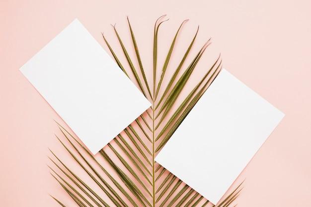 Flat lay de modelo de cartão de papel com folha