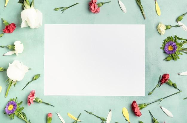 Flay lay quadro de flores de cravo com cartão branco