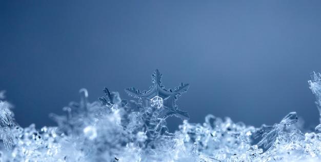 Floco de neve na neve, inverno