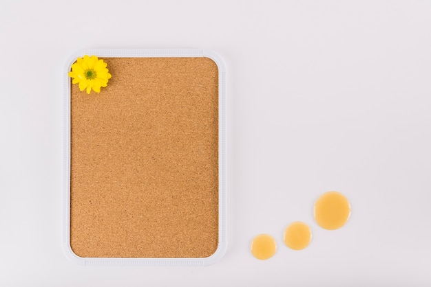 Flor amarela na moldura de cortiça perto de gotas de mel sobre fundo branco