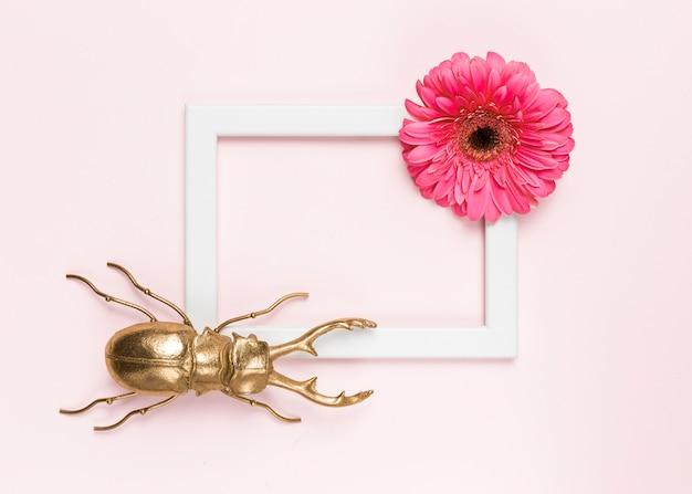 Flor, besouro e moldura