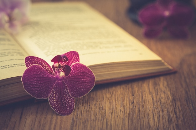 Flor bonita com livro velho e xícara de café ou chá. fundo romântico com efeito de filtro retrô