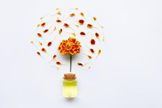 Flor bonita do cravo-de-defunto com óleo essencial.