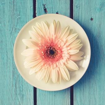 Flor branca em chapa na parede de madeira brilhante. postura plana.