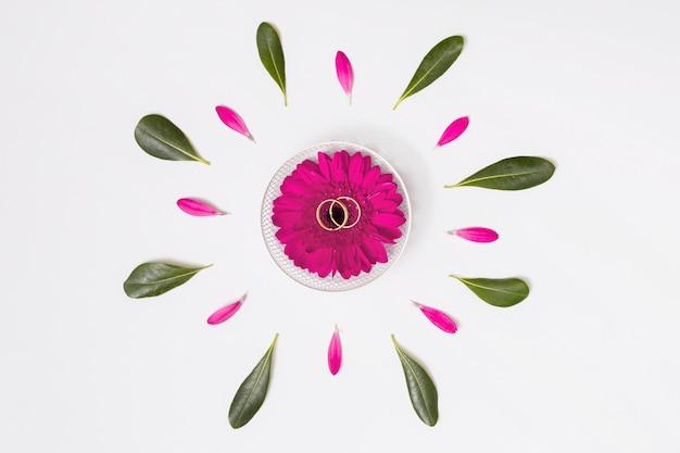 Flor com anéis entre pétalas e folhagem