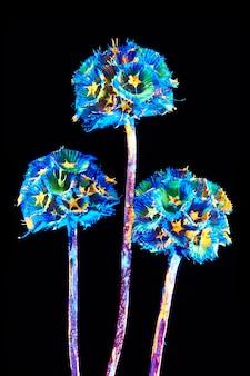 Flor com brilho de néon em um fundo preto.