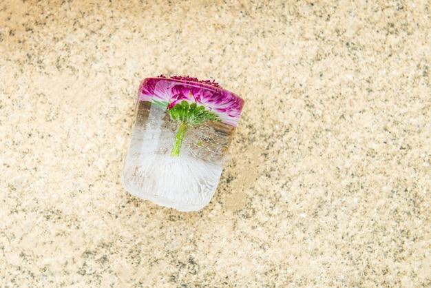 Flor congelada no cubo de gelo
