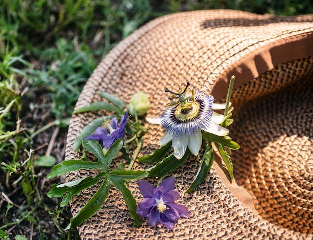 Flor da paixão e chapéu na natureza