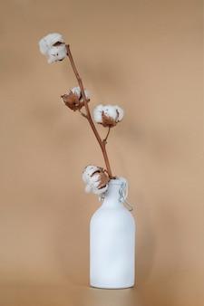 Flor de algodão planta na areia bege