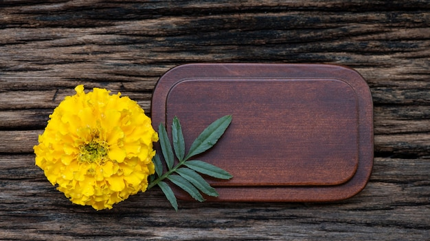 Flor de calêndula colada em um fundo de madeira velho.