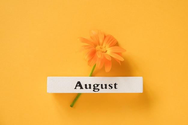 Flor de calêndula laranja e calendário mês de verão agosto