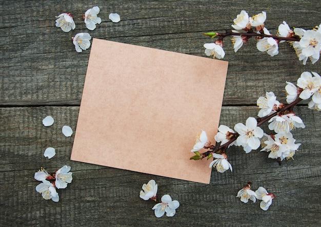 Flor de damasco de primavera e cartão