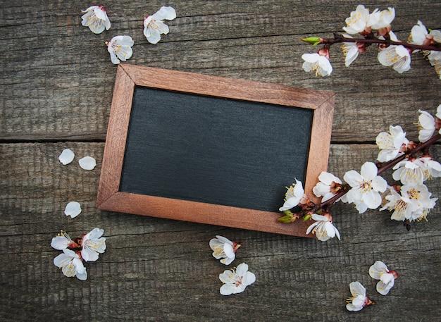 Flor de damasco de primavera e quadro-negro